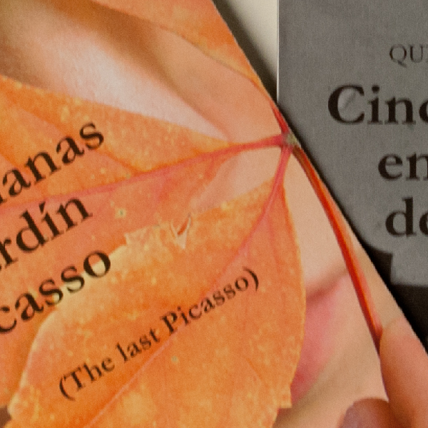 Cinco semanas en el jardín de Picasso (The last Picasso)